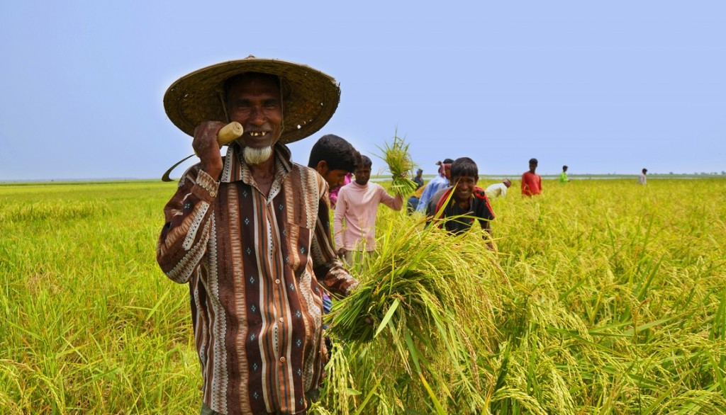 Farmer_of_Bangladesh